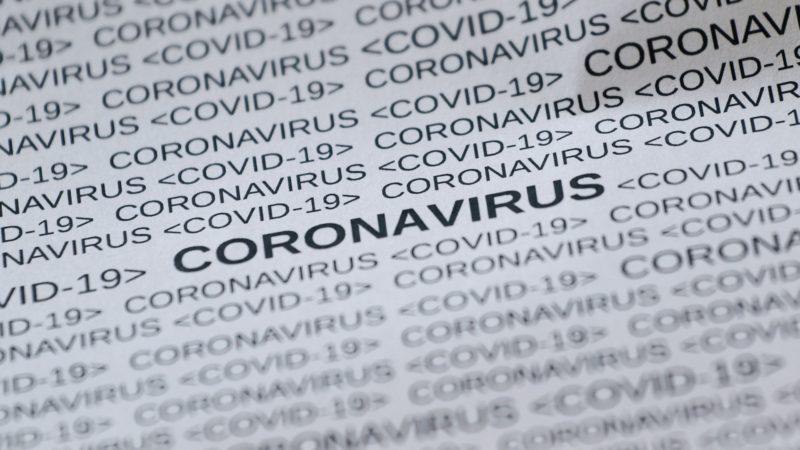 Es werden gefälschte Schreiben, angeblich vom Gesundheitsministerium Schleswig-Holstein, mit Falschinformationen zum Coronavirus verteilt.