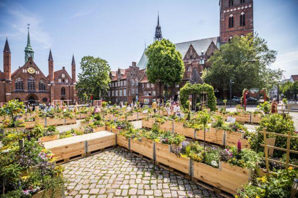 """Der """"Kulturgrüne Komplimentegarten"""" auf dem Koberg, der bereits am 13. Juni abgebaut werden sollte, geht in die Verlängerung bis Ende August."""