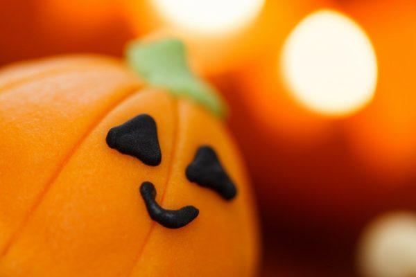 """In diesem Jahr findet gleich an zwei Standorten für große und kleine Monster Halloween statt: """"Halloween im Holstentor"""" und """"Spuk im Günter Grass-Haus"""""""